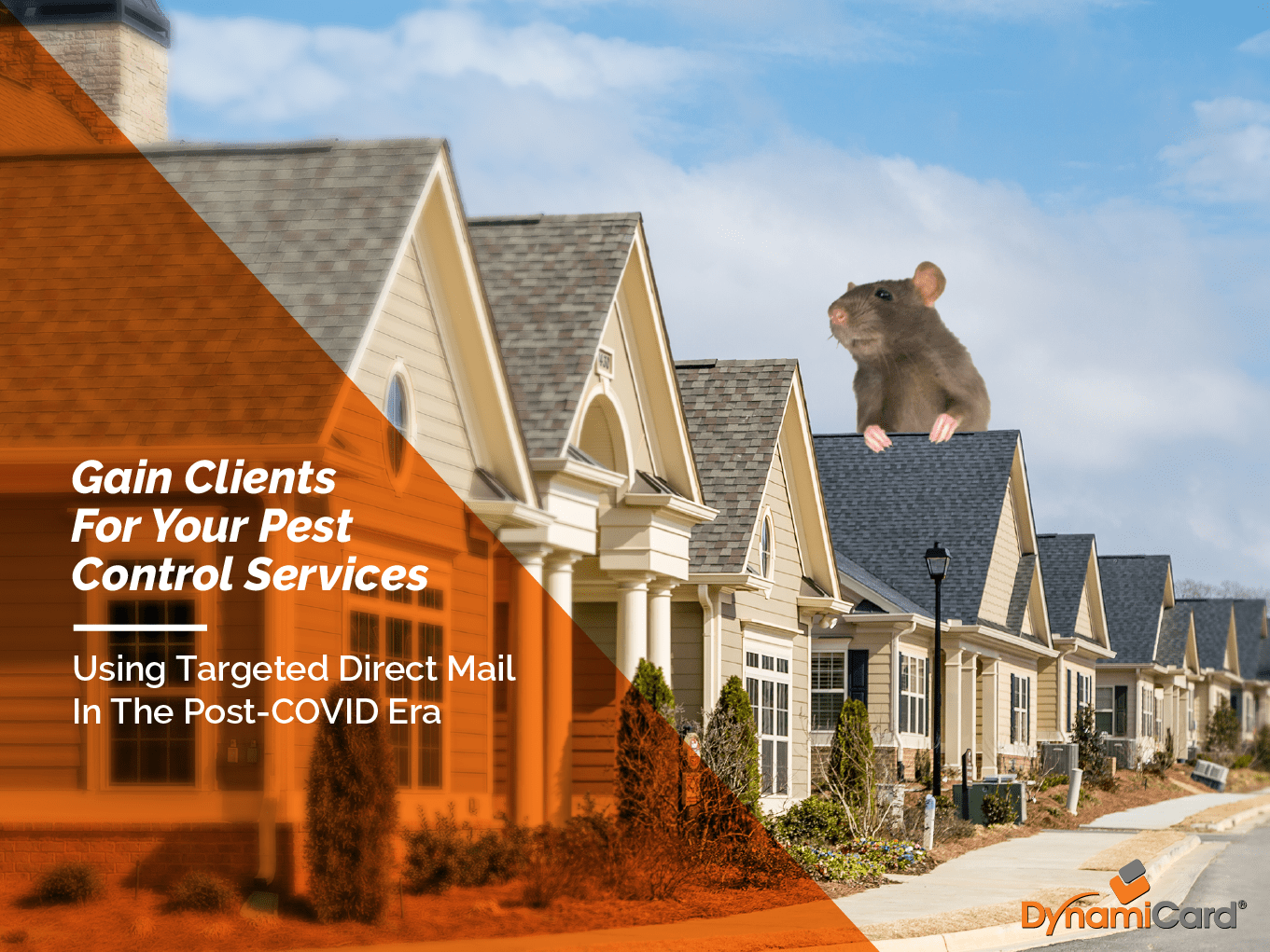 Pest Control Marketing